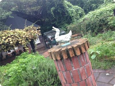 rosegarden030